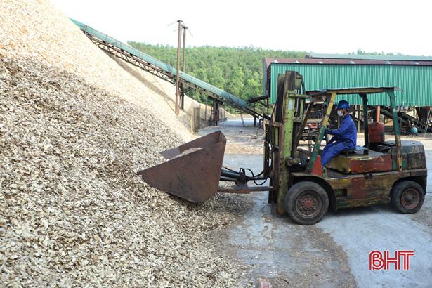 Các doanh nghiệp xuất khẩu dăm gỗ ở Hà Tĩnh nộp ngân sách 9,7 tỷ đồng trong quý I