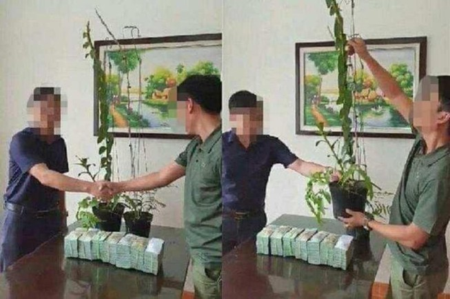 Công an cảnh báo nguy cơ thổi giá, rửa tiền từ hoa lan tiền tỉ